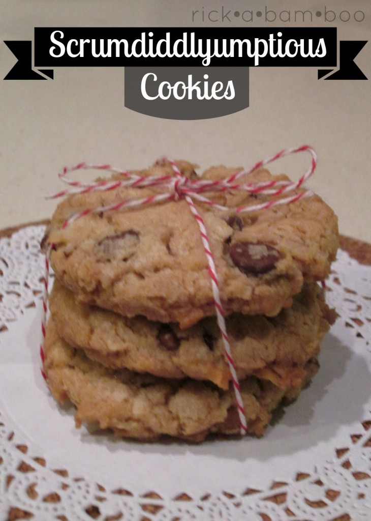 sscrumdiddlyumptious cookies - oatmeal, chocolate chips, coconut, craisins, and nuts