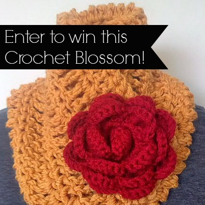 Win this Crochet Blossom