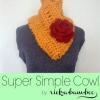 Super Simple Crochet Cowl