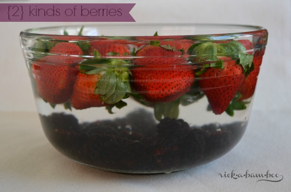 Double Berry Bath   rickabamboo.com   #homemade #cleaner #produce