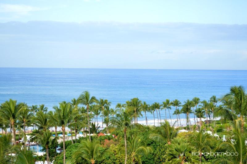 Our view   rickabamboo.com   #maui #hawaii