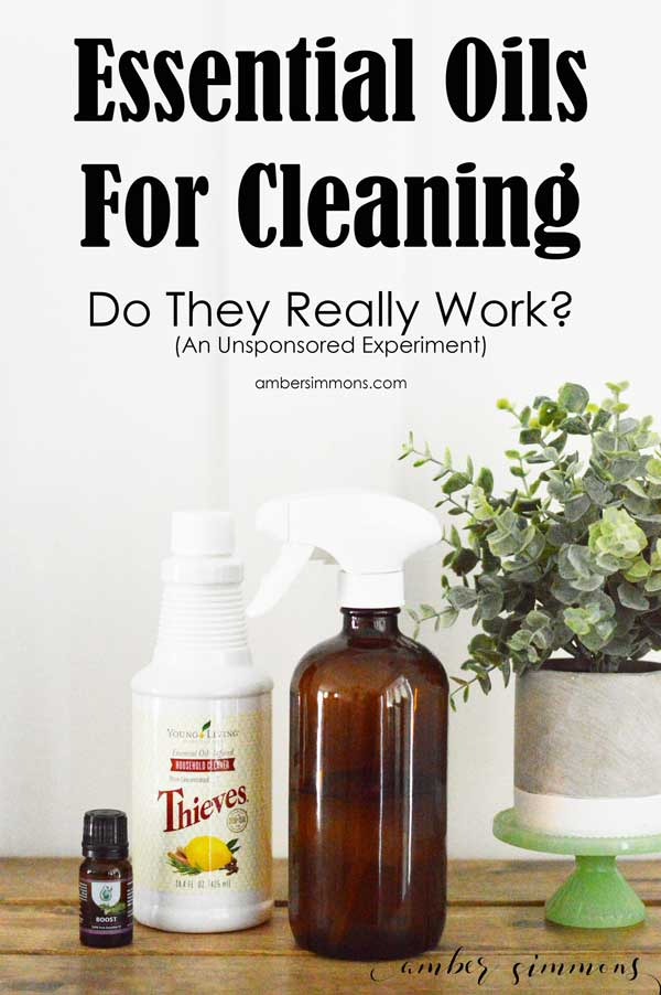 The results my home scientific test on essential oils for cleaning. Do they really work? This is an unsponsored, unbiased experiment. #essentialoils #thievescleaner #norwex #truth