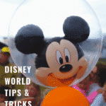 Make the best of your vacation with these Disney World Tips and Tricks.